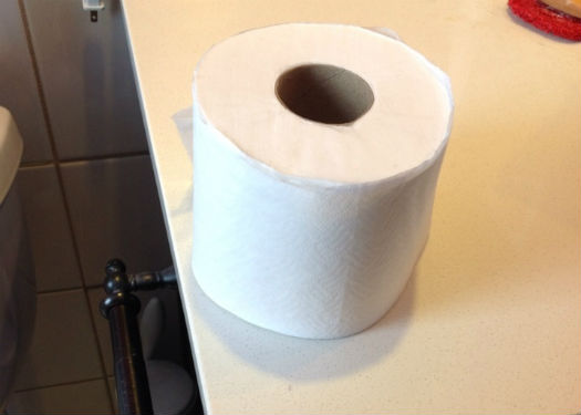 The roll of toilet paper in question.